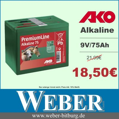 Angebot KW 20 jpeg