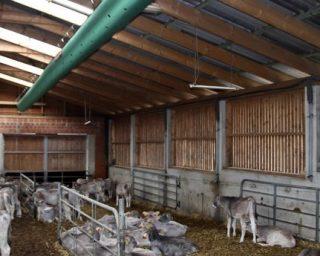 csm_Agriculture_LA_VST_Bohmte_DE_1_RGB_150dpi_4f6dc97885