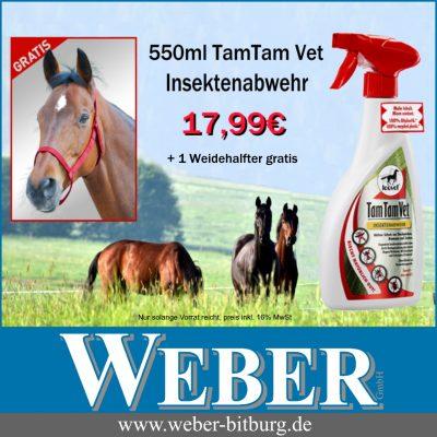 Angebot Kw 33 jpeg